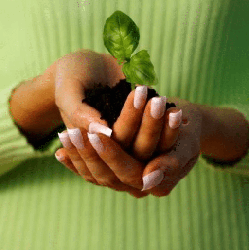 When We Thank God, a Seed Is Sown