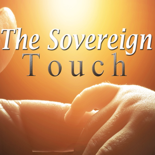 Trusting the Sovereign Touch in My Life